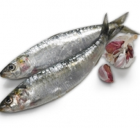 Soused Cornish sardines